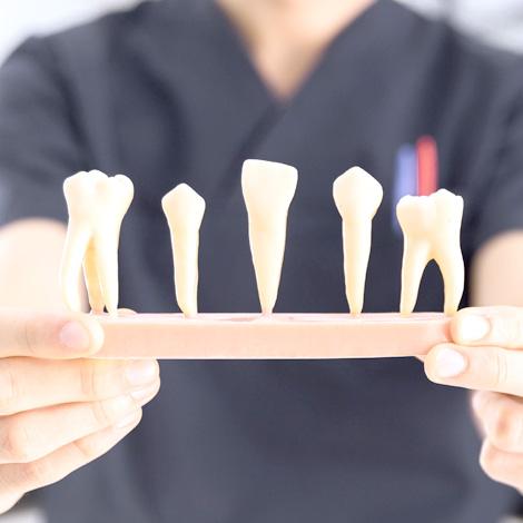 Protesis dental. Alaia Clinica Dental. Hernani. Gipuzkoa